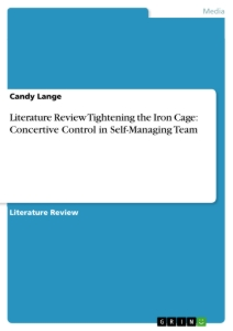 literature review tightening the iron cage concertive control in literature review tightening the iron cage concertive control in self managing team
