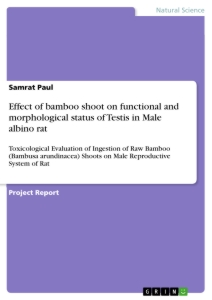 Titel: Effect of bamboo shoot on functional and morphological status of Testis in Male albino rat