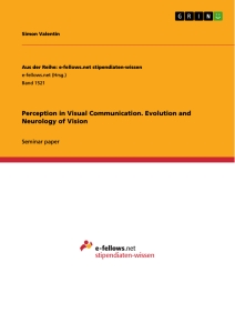 Titel: Perception in Visual Communication. Evolution and Neurology of Vision
