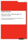 Titel: What is the effect of human rights on corporate activity?