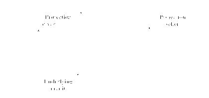 free argument structure linguistik aktuell linguistics today 2007