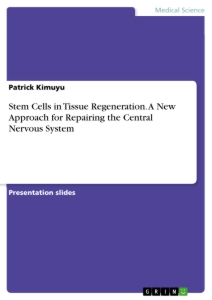 Title: Stem Cells in Tissue Regeneration. A New Approach for Repairing the Central Nervous System
